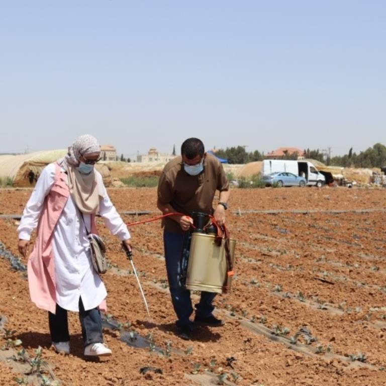 Crop dusting in Jordan
